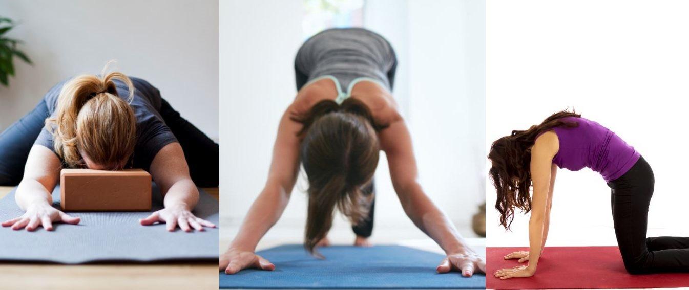 sheffield hobbies - yoga